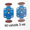 Irritec 3 Way valves kit for sand filter ER dn 80 - 200 kg