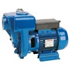 Speroni HG 50-1.1 Monoblock pump