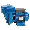 Speroni HG 100-11 Monoblock pump