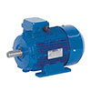 Electric motor – Speroni 400V 4P B3 0,5HP 71B ALL